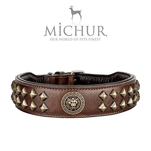 MICHUR Diego Braun Hundehalsband Leder, Lederhalsband Hund, Halsband, Leder, mit Löwenkopf Applikation, Flachnieten in Aklt-Messing Optik, Braun Gold, in verschiedenen Größen erhältlich -