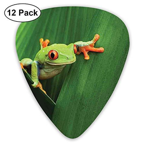 Guitar Picks 12-Pack,Cute Red Eyed Frog Between Exotic Macro Big Leaves Wild Nature Night Animal Vivid Colors -