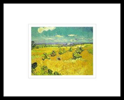 Vincent van Gogh The Wheat Field, 1888 Poster Bild Kunstdruck im Alu Rahmen in schwarz 40x50cm