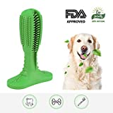 Best Cleaning For Teeths - Gladog Dog Toothbrush Stick,Dog Tooth Cleaning, Dog Dental Review