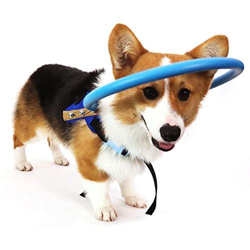 RUNMIND Arnés para Perro ciego Chaleco Protector para Perros con Ojos Enfermos para Evitar Colisiones S