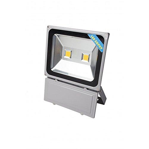 12v Fg Glühbirne (lineteckled® e04.002.100F-g Lampe COB LED Slim IP66100W 220V Kaltweiß 6500K hohe Helligkeit 10000Lumen, Leuchtturm mit Doppel LED für Außen IP66, Scheinwerfer für Außen 100W, Scheinwerfer für Außen)