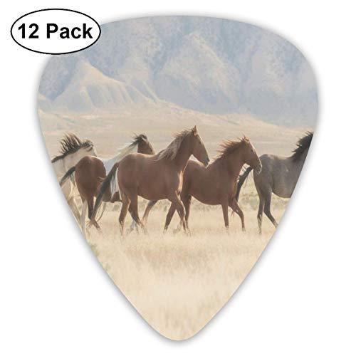 Guitar Picks 12-Pack,Wild Mustang Horses Herd Running In A Valley Utah Outdoor Scenery Photography -
