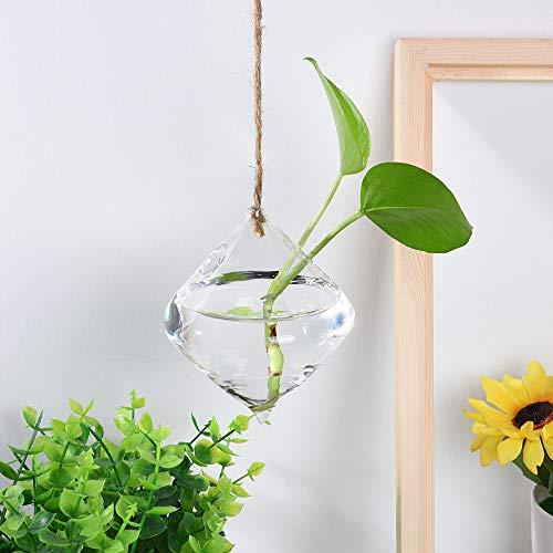 EliaSan Home Hängender Glaskugel-Vasen-Blumen-Blumentopf-Terrarium-Behälter-Partei-Hochzeits-Dekor