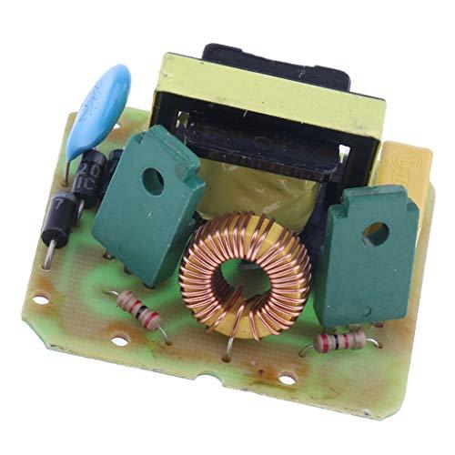 Homyl 2-Kanal-Booster-Modul Mit Doppelschablone DCAC-Wechselrichter-Modul 12V Bis 220V
