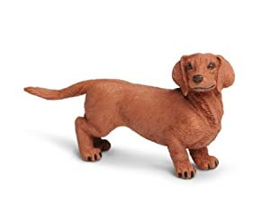 "Safari s251529""best in Show perros miniatura de perro salchicha"""