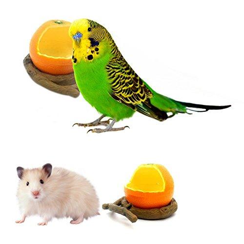 Purplert Mangiatoia per Uccelli Pappagallo Criceto Forma di Frutta simulata Mangiatoia per Uccelli Uccello Mangiatoia per Acqua Accessorio per Uccelli...