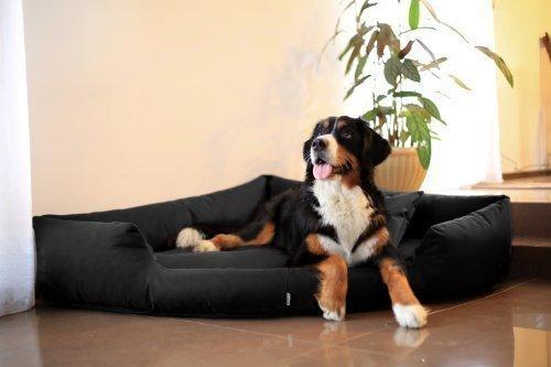 Artikelbild: TR3-03 Hundebett TRIVIA Eckbett Eckhundebett Hundesofa Hundebett Gr. M 80cm SCHWARZ