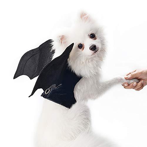 Minion Kostüm Pet - Minions Boutique Halloween Haustier Hund Kostueme Harness Outfits Fledermausfluegel Hund Cosplay Kleidung Fuer Kleine Hunde Katzen L