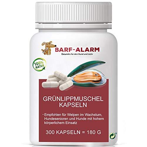 barf-alarm Grünlippmuschel-Kapseln Hund - 300 Kapseln - 100% Grünlippmuschelpulver Kapseln für Hunde mit je 500mg - Grünlippmuschelextrakt Hunde -