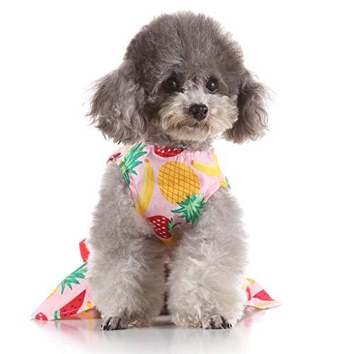 YWLINK Haustier Ananas Obst Drucken Hund KostüMe Haustier FrüHling Sommer Süß Urlaub Strand Party Kleid(Rosa,L)