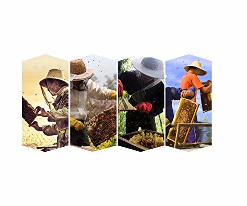 Topchances Beekeeping Starter Kit Beekeeping Equipment Tool Including Beekeeping Suit Jacket& Gloves, Bee Hive Brush,queen Catcher, Hook Hive Great for Professional Beginner Beekeepers (Set of 7) 2