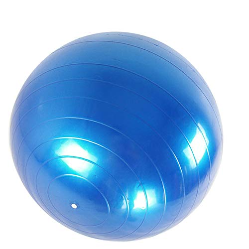 Fortitude Sports Swiss Ball 55 cm - Gymnastikball mit Pumpe für Yoga, Fitness, Pilates, Balance, Fitnessstudio, Anti-Rutsch - violett