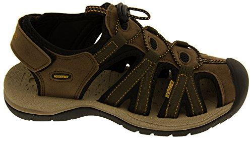 Northwest Territory Dames Randonnée et le Marche Chaussures Marron