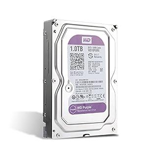 Western Digital WD 1TB interne Festplatte (2,5 Zoll) Überwachungsfestplatte für Videoüberwachung