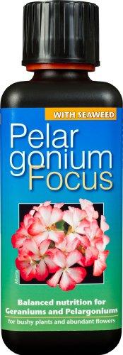 pelargonium-focus-unique-liquid-concentrated-fertiliser-300ml