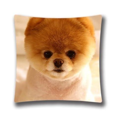 Zipper Design Cute Dog Boo Throw Pillowcase, 18x18 inches Pillow Sham (Twin sides) AnasaC33356