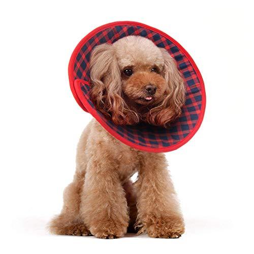 Alfie Pet by Petoga Couture Candace Hundehalsband, weich, für Hunde und Katzen, Flanell, Größe XL -