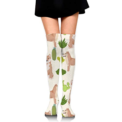 XCVNBX Shiba Inu Cactus Trendy Dog Knee High Graduated Compression Socks for Unisex - Best Medical, Nursing, Travel & Flight Socks - Running & Fitness - Box Katzen Cactus