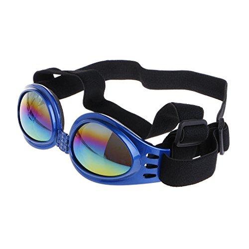 qingqingR Mode pet Faltbare schutzbrille uv-Schutz Sonnenbrille Sonnencreme gläser blau 1 stück