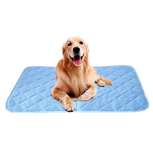 iBaste Kühlmatte für Hunde Matte Pads Pet Cooling Mat Betten mit selbstkühlendem Kühlgel Matte für Hundeboxen Zwinger (L/90cmx60cm.) (Hundebox Mat)