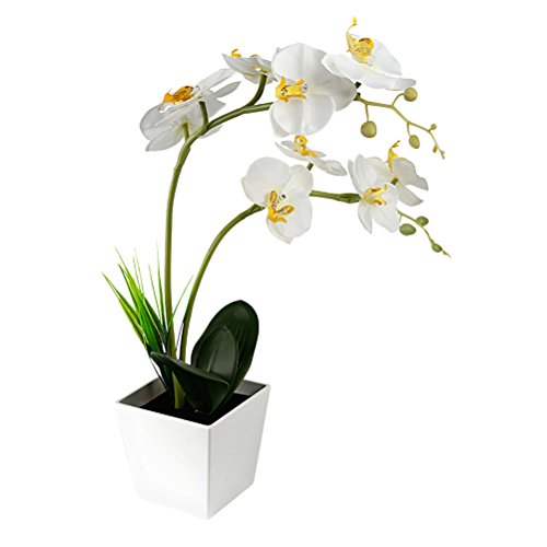 Batterie ledmomo 9LED Lampe mit Projektor Künstliche Orchideen in Topf mit Blumen Dekoration von Haus (weiß)