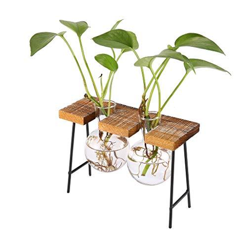 SunniMix Vintage Hocker Shured Holzschale Hydroponische Blume Klar Becherglas Vase - 2 Becher (Blumen Vase Mit Hocker)