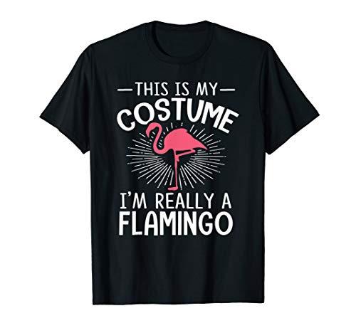 Halloween Kostüm Flamingo - Mein Menschliches Kostüm Ich Bin Ein Flamingo Halloween Hemd