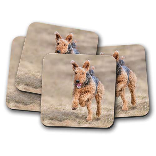 Untersetzer-Set mit Airedale Terrier - Hund Welpe Yorkshire, lustiges Geschenk #12469 -