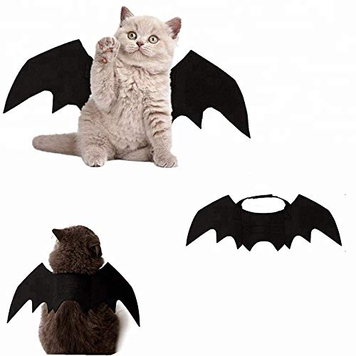Katze Kleidung, Katze Fledermaus Kostüm | Haustier Fledermausflügel ()