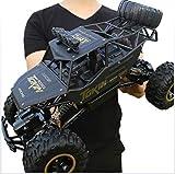 RC Voiture Télécommandée - 4WD,2.4Ghz Voiture à Grande Vitesse de,avec Cadeau de Surprise pour garçons - Étanche/Antichoc (Noir) Voiture Électrique Rapide Véhicule Buggy Monstre