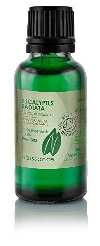 Huile Essentielle d'Eucalyptus Radiata BIO - 50ml