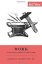Work and Our Labor in the Lord (Short Studies in Biblical Theology)