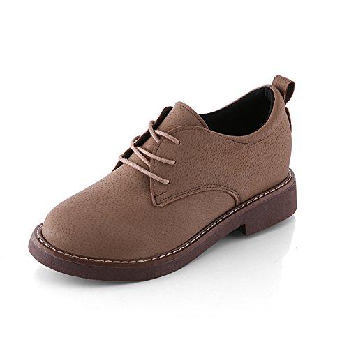 a augmenté dans les chaussures de mode/Chaussures occasionnelles de dentelle européen/escoge los zapatos C