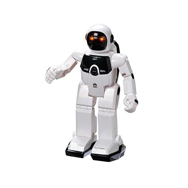 41qXchiwTOL. SS600  - World Brands Robot Radio Control