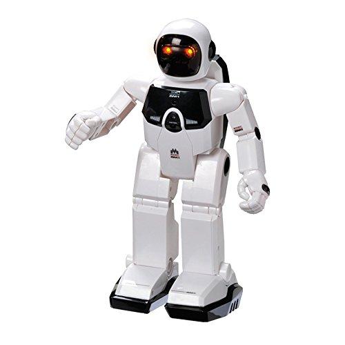 41qXchiwTOL - Robot Radio Control
