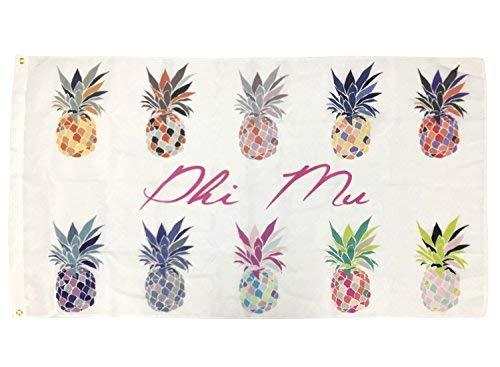 Phi Mu Pop Art Ananas Sorority Flagge griechischen Buchstaben Verwenden als großes Banner 3x 5Fuß - Delta Delta Sorority Delta Geschenke