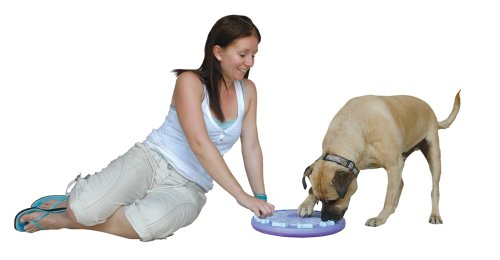 Nina Ottosson Dog Twister Activity Toy 6
