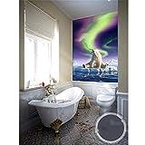 Qwerlp Gewohnheitswohnzimmerwandbild Des Fototapeten 3D Nichtgewebtes Bild Eisbär, Der Die Nordlichter Aufpasst, Die Wandgemälde Der Fotowand-350Cmx250Cm