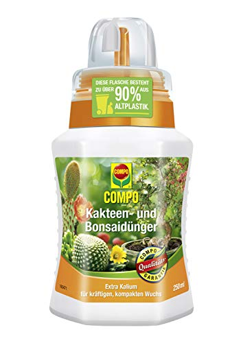 COMPO Kakteen- und Bonsaidünger für alle Kakteen, Bonsais und dickblättrigen Pflanzen (Sukkulenten), Spezial-Flüssigdünger mit extra Kalium, 250 ml