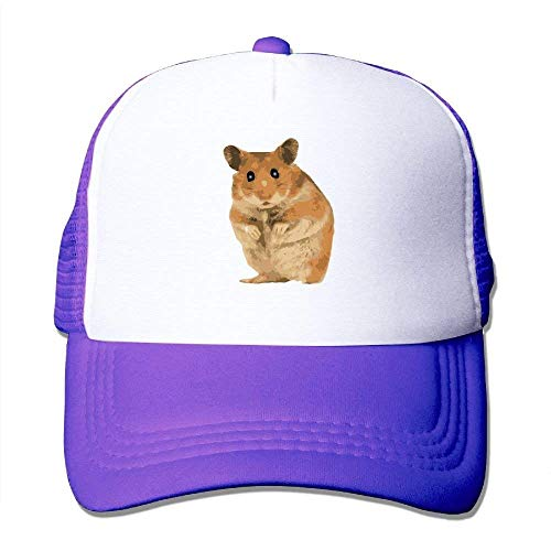 Kostüm Hamster Sexy - dfegyfr Netter Hamster-justierbarer Sport-Maschen-Baseballmütze-Fernlastfahrer-Kappen-Sun-Hüte Fashion3