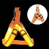 Pastell LED-Licht Hundegeschirr Verstellbare Leuchtend Brustgeschirre Laufgeschirre Vest Sicherheits USB Aufladbar Haustier Harness für Kleine Mittlere Hunde Welpen Gassigehen bei Nacht (S, orange)