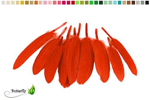 10 Indianerfedern ca. 10-15cm (rot 250) // Dekofedern Bastelfedern Masken Federn Schmuckfedern ()