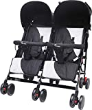 R for Rabbit Ginny and Johnny - The Twin Stroller and Pram
