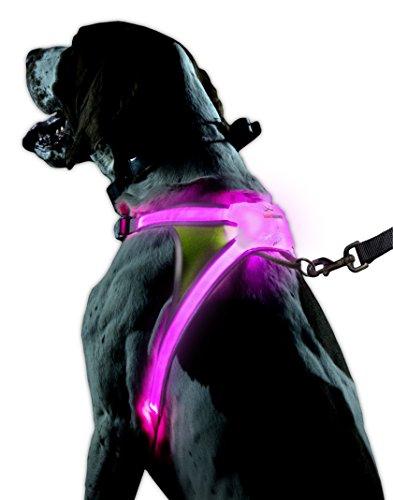 noxgear lighthound-Revolutionäre beleuchtet und Warnweste für Hunde inkl. LED Bunte Faser Optik (USB wiederaufladbar, verstellbar, leicht, regendicht)