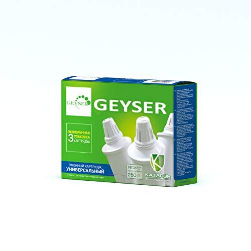 tusche für Geyser Filterkanne ()