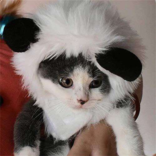 DWH FOREVER Katzen-Kostüm Löwenmähne Perücke Hut Kleidung mit Ohren Halloween Kostüm für Katzen