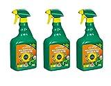 Evergreen Garden Care Deutschland GmbH Celaflor Rasen-Unkrautfrei Anicon 3 x Ultra Spray 750 ml