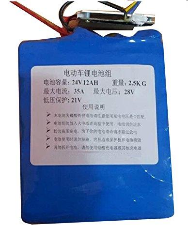 China Selection 24V 12AH LiFePO4 Lithium-Eisen-Phosphat-Batterie mit BMS Kostenlos Ladegerät für Elektro Motorrad (15cm*11cm*8cm)