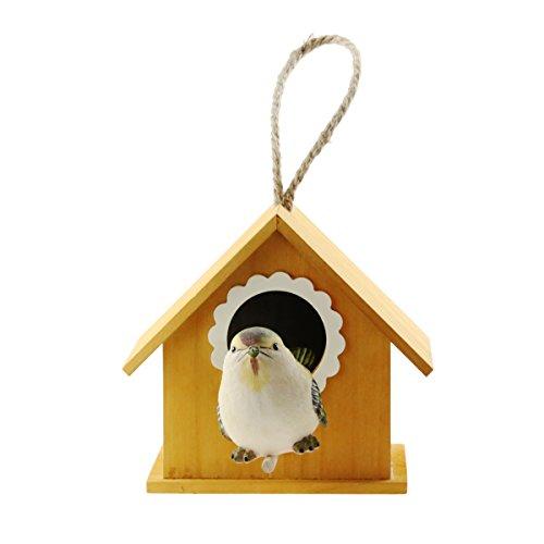 Casa de madera para pájaros, comederos para pájaros, nido de cría de pájaros, para peonía de loro...